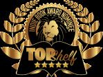 cctillery.Indie_Book_Award_Nominee (2)
